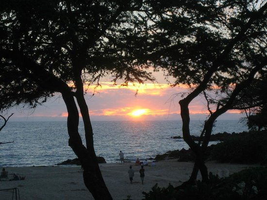 Areca Palms Estate Bed and Breakfast : Sunset at the beach