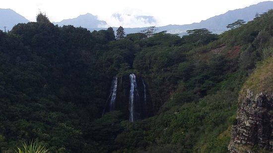 Opaekaa Falls: Falls