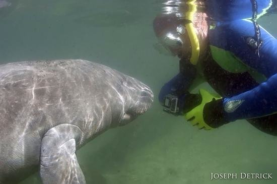 Fun 2 Dive: Thanks for the great shot of me, Captain Joseph!