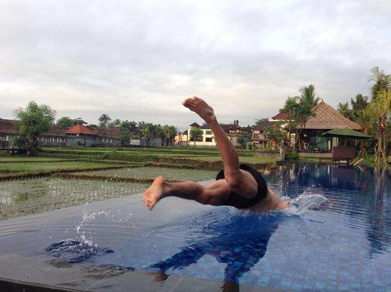 Plataran Ubud Hotel & Spa: Infinity Pool, paradise!