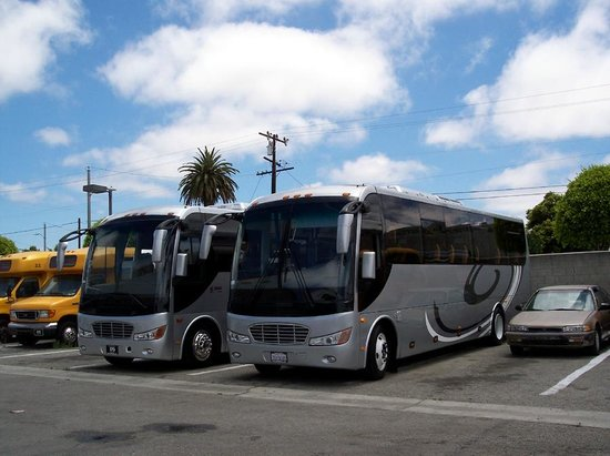 Los Angeles Sightseeing Tours Santa Monica Review