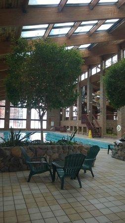 Holiday Inn Countryside : pool