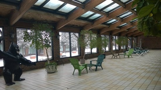 Holiday Inn Countryside : sitting area by pool
