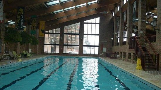 Holiday Inn Countryside : nice pool