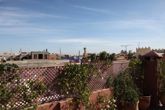 Riad Bouganvilliers : View from rooftop