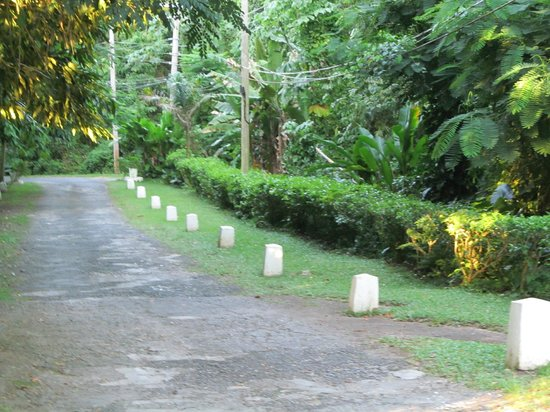 Goblin Hill Villas at San San : Lush grounds