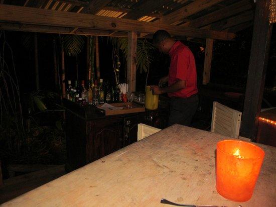 Goblin Hill Villas at San San : Tree bar at night