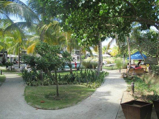 W Retreat & Spa - Vieques Island: outside room, by pool