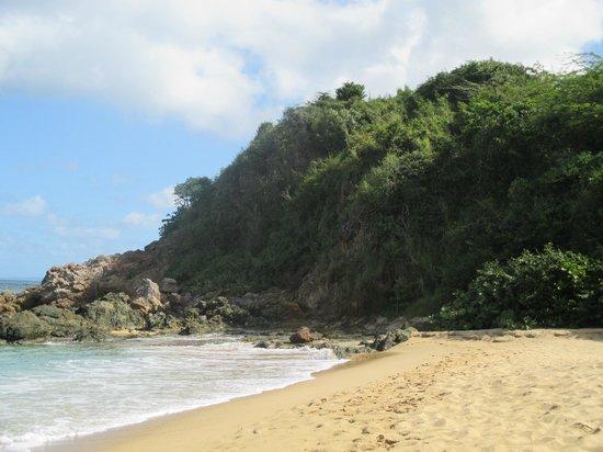 W Retreat & Spa - Vieques Island: beach by hotel