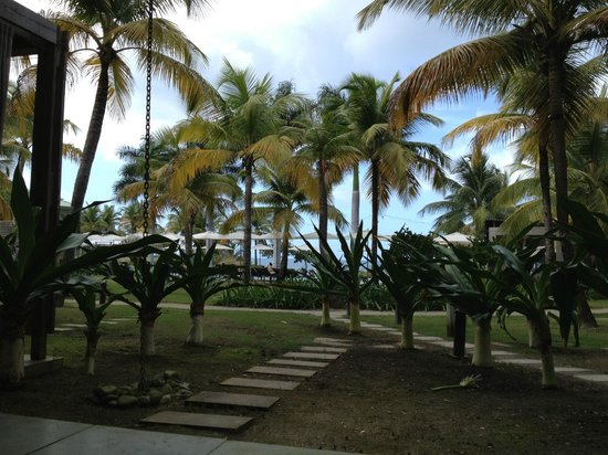 W Vieques Island : view from pool oasis2