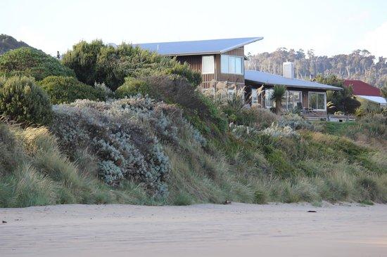 Curio Bay Accommodation: Blick vom Strand auf das Haus