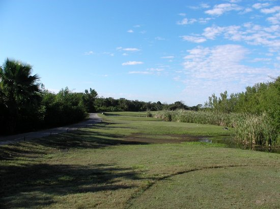 Cozumel Country Club: second hole