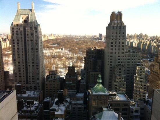 Le Parker Meridien New York: View of Central Park from the 39th floor elevator landing. gorg!
