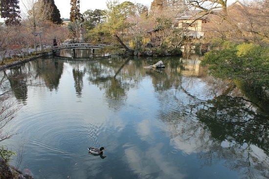 Eikan-dō : Eikan do garden