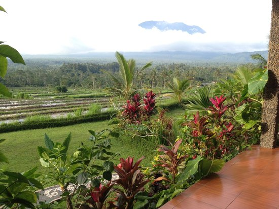 Great Mountain Views Villa Resort : Hotel view