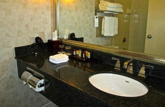 Niagara Falls Marriott on the Falls: Bathroom