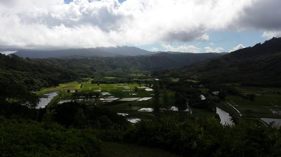 Hanalei Valley Lookout: Great View from the lookout