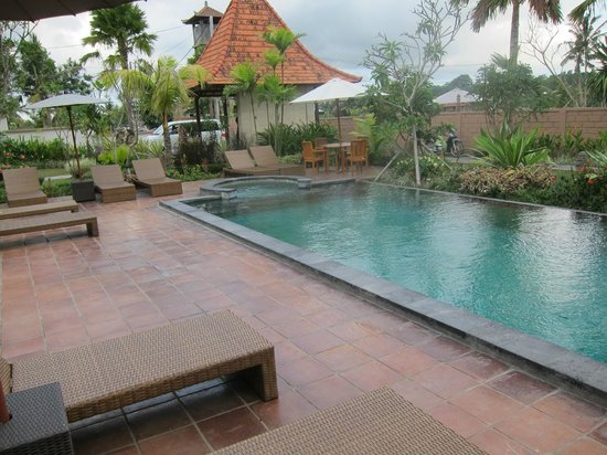 Inata Bisma Resort & Spa Ubud : プール前
