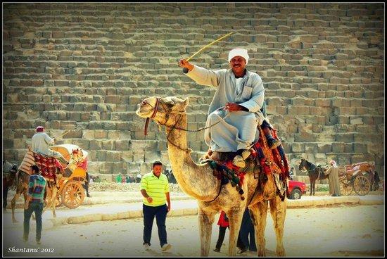 Plateau de Gizeh : Giza Plateau 3