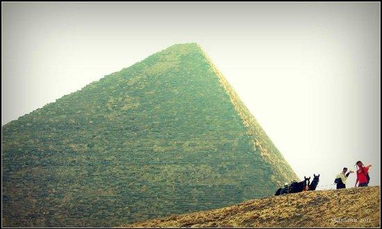 Plateau de Gizeh : Giza Plateau 5