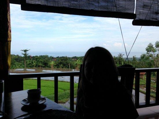 Puri Mangga Sea View Resort & Spa: View from the restaurant