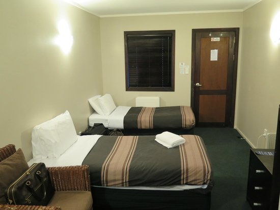The Park Hotel Ruapehu : My room