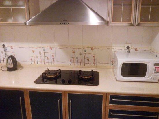 Ariva Beijing Luxury: Kitchen has all basic needs