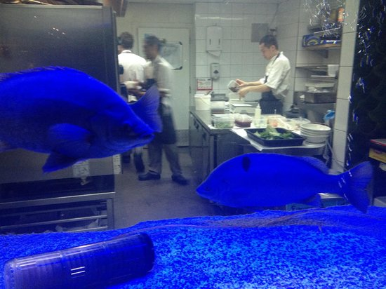 """Longrain: Chefs and """"blue"""" fish at work"""