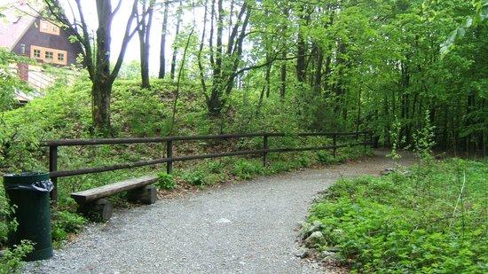 Moravian Karst: Наверху