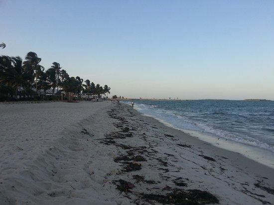 Kunduchi Beach Hotel And Resort: right on your doorstep