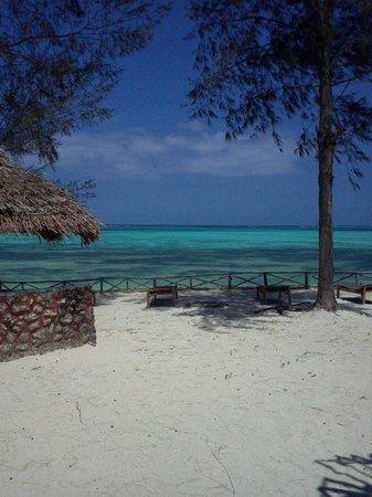 Queen of Sheba Beach Hotel: Blick auf den Indischen Ozean