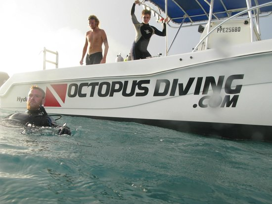 Octopus Diving: One of the boats
