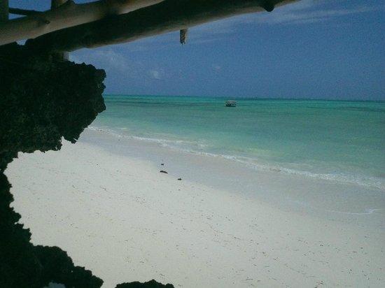 Queen of Sheba Beach Hotel: The Beach