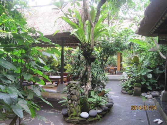 Cafe Wayan & Bakery : 内部で庭にある席です