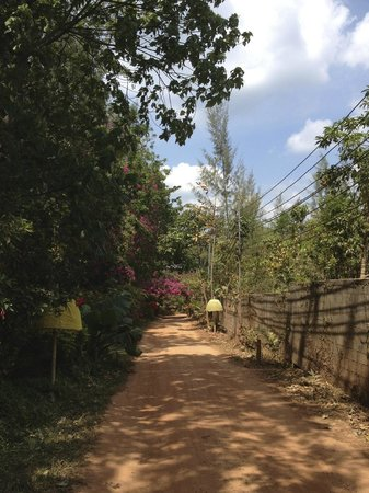 Relax Bay Resort : Der Weg zum Resort