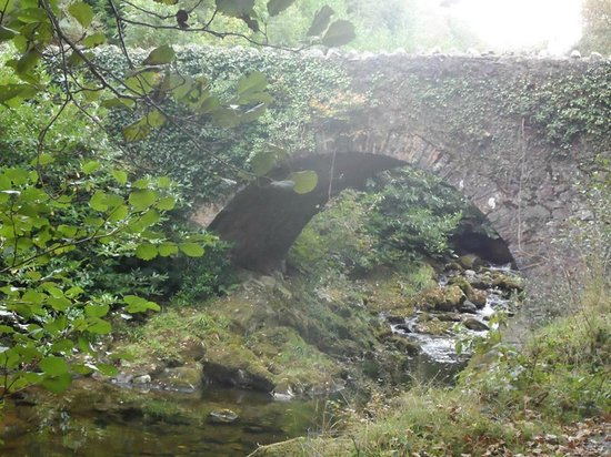 Tollymore Forest Park: Parnell's bridge