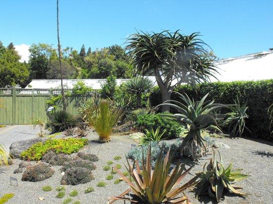 Victoria Esplanade Gardens: Succulent garden