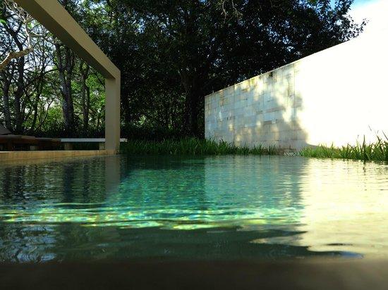 The Bale: Pavillion Pool
