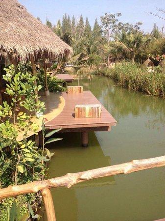 Asita Eco Resort: Rf