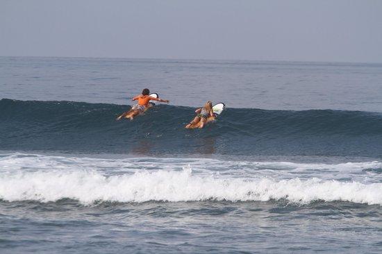 Surf Discovery: Гребем с Никитой на лайн ап!
