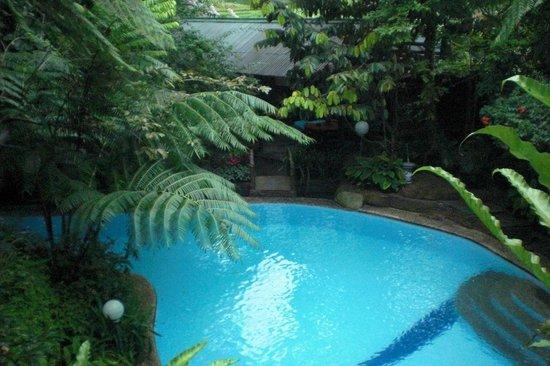 GG House - Happy Valley: Happey Valley Bogor