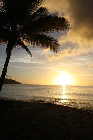 Sisters Sea Lodge : Sonnenuntergang