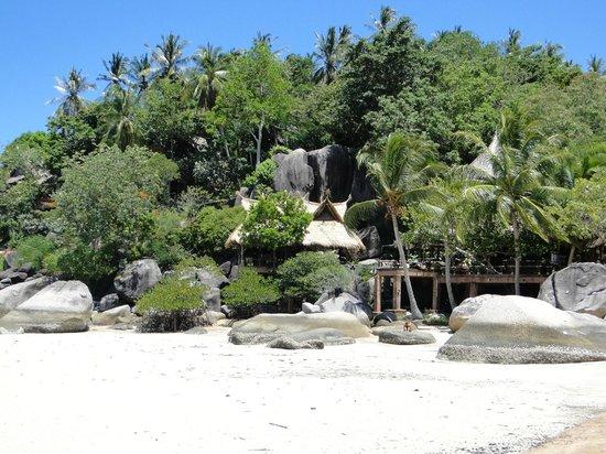 Koh Tao Cabana: Une plage magnifique