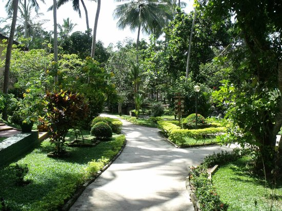 Siddhalepa Ayurveda Health Resort: Botanical Garden