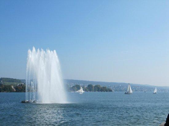 Seebad Enge: озеро