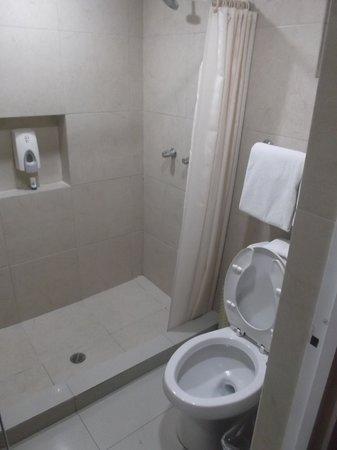 Best Western Plus Royal Courts : Petite salle de bain de notre chambre 119 - 26 janvier 2014.