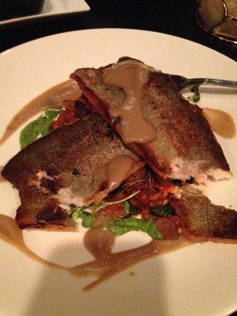 Avvino : Rainbow trout
