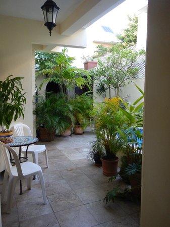 Andalucia House: Back garden