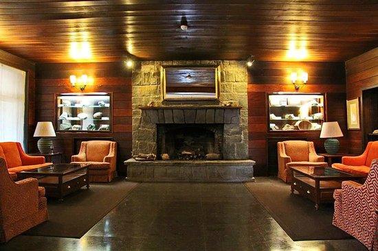 Parador de Canadas del Teide : Каминный зал