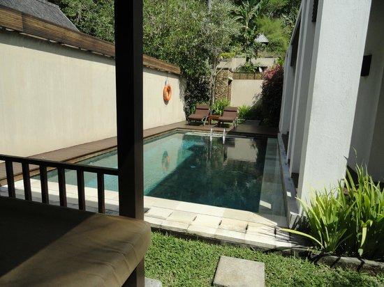 The Samaya Bali Ubud : Private Pool in the Villa